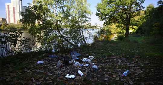 Куда жаловаться на незаконную свалку в Московской области