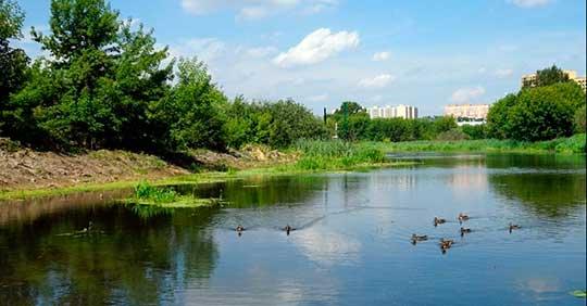 Программа «Реабилитация малых рек Подмосковья»